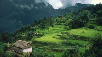 Nepal clouds grass gray green wallpaper