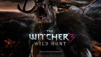 The witcher 3: wild hunt text video games wallpaper