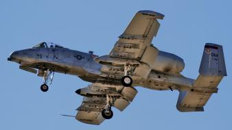 A-10 thunderbolt ii aircraft wallpaper