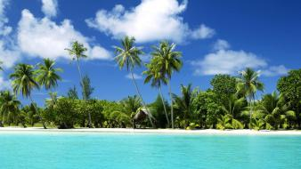 Beaches holidays palm trees resort sea Wallpaper