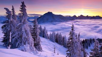 Fog purple snow sunset view Wallpaper