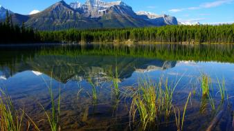 Forests lakes landscapes mountains nature wallpaper