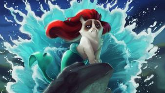 Grumpy cat the little mermaid tsaoshin artwork disney wallpaper