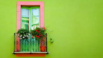 Green Wall Window Hd wallpaper