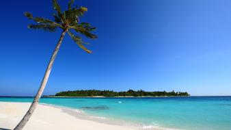 Maldivian Beach wallpaper