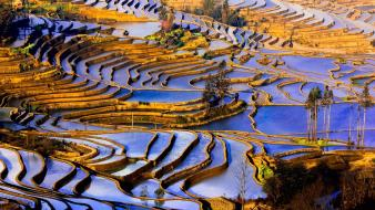 China yunnan agriculture landscapes nature wallpaper