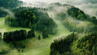 Forests grass green hills houses Wallpaper