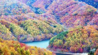 Fukushima japan autumn colors forests wallpaper