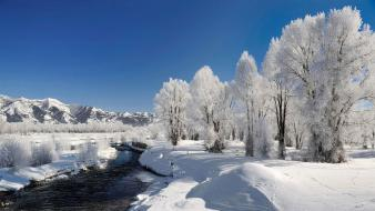 Landscapes nature skyscapes snow trees wallpaper