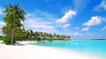 Maldives olhuveli beach islands palm trees wallpaper