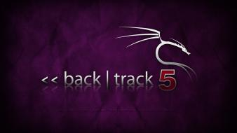 Backtrack 5 linux purple wallpaper