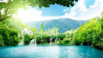 Forests green lakes nature water wallpaper