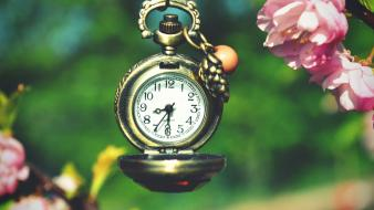 Flowers macro pocket watch wallpaper