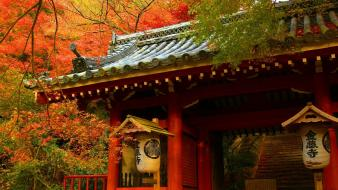 Japan autumn houses trees wallpaper